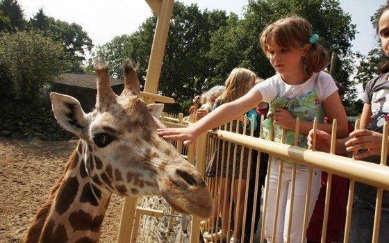 Največji živalski vrt pri nas